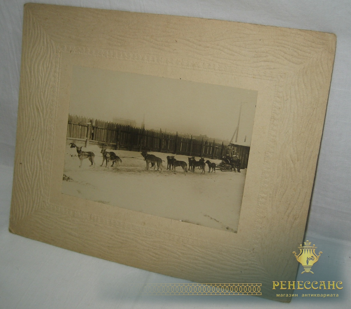 Фотография старинная «Упряжка» №1349